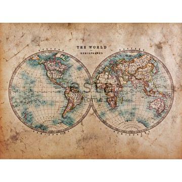 fotobehang two hemispheres bruin en blauwgroen