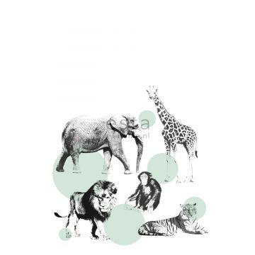 fotobehang dieren mintgroen