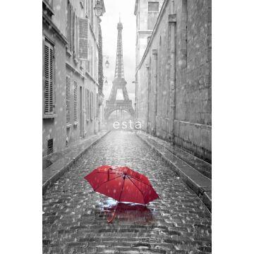fotobehang Parijs city view grijs en rood