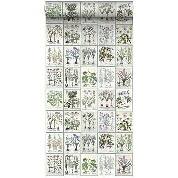 vlies wallpaper XXL bladzijden botanisch bloemen en planten boek licht warm grijs en groen