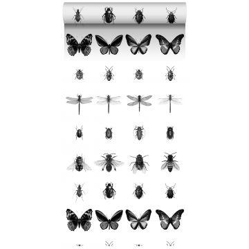 vlies wallpaper XXL pentekening insecten zwart wit