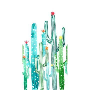 fotobehang aquarel geschilderde bloeiende cactussen tropisch junglegroen en turquoise