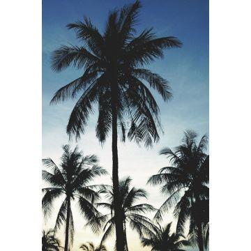 fotobehang palmbomen blauw, zwart en beige
