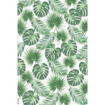 fotobehang tropische bladeren groen