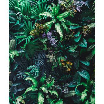fotobehang tropische planten groen