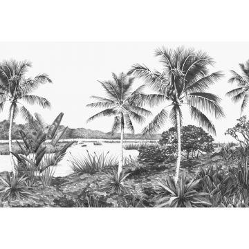 fotobehang tropisch landschap met palmbomen zwart en wit