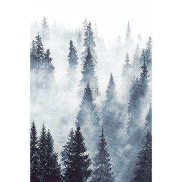 fotobehang mistig bos groen