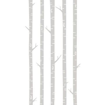 fotobehang berken boomstammen grijs