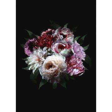 fotobehang bloemstilleven multicolor op zwart