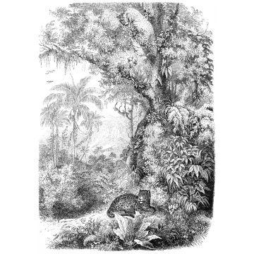 fotobehang jungle-motief zwart wit