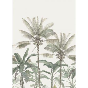 fotobehang palmbomen lichtbeige en vergrijsd groen