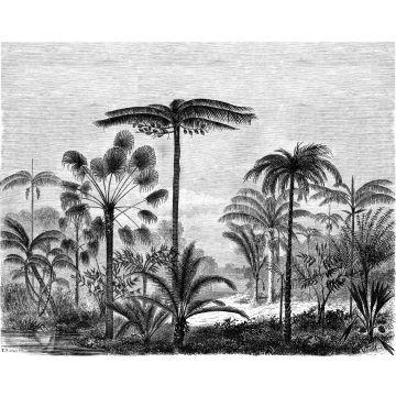 fotobehang tropisch landschap met palmbomen zwart wit