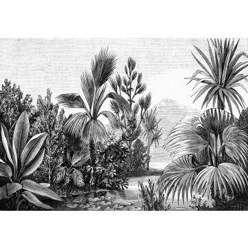 fotobehang tropisch landschap zwart wit