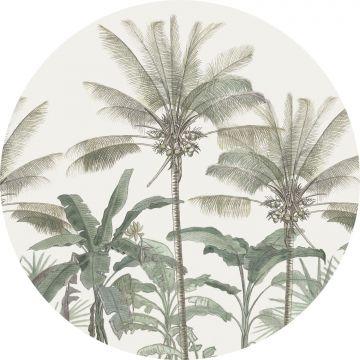 zelfklevende behangcirkel palmbomen lichtbeige en vergrijsd groen