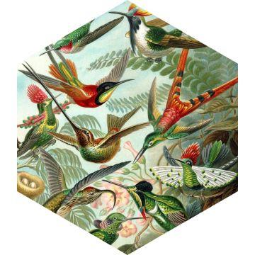 muursticker vogels tropisch junglegroen