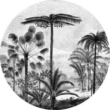 zelfklevende behangcirkel tropisch landschap met palmbomen zwart wit
