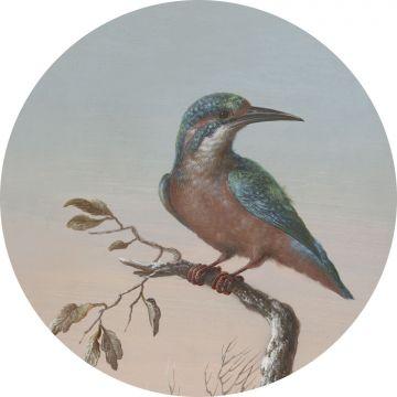 zelfklevende behangcirkel ijsvogel op tak avondrood