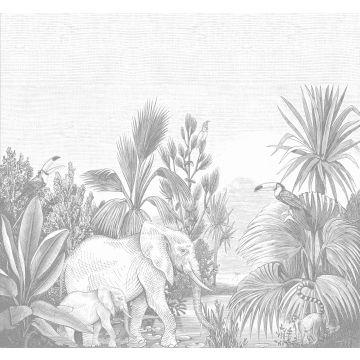 fotobehang jungle-motief grijs
