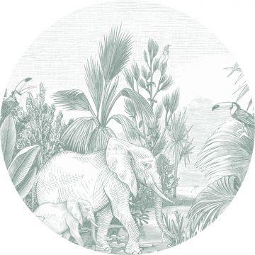 zelfklevende behangcirkel jungle-motief groen
